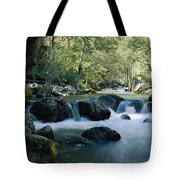 Woodland View Of A Small Creek Flowing Tote Bag