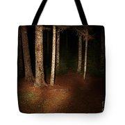 Woods At Night Tote Bag