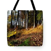Woods During Autumn Tote Bag
