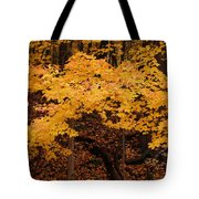 Woods Of Yellow Tote Bag
