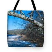 Wordens Pond Winter Tote Bag