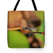 Wounded Wing Tote Bag