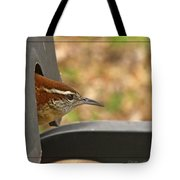 Wren Peeking Out Tote Bag