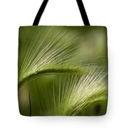 Wyoming Grassess Tote Bag