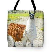 Wyoming Llama - El Tuffo Tote Bag
