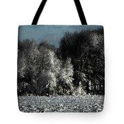 Wyoming Snowstorm October 2011 Tote Bag