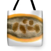 X-ray Of A Cocoa Pod Tote Bag