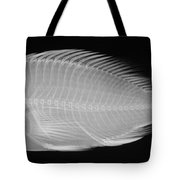 X-ray Of A Flame Hawkfish Tote Bag