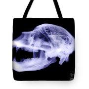 X-ray Of Kodiak Bear Skull Tote Bag
