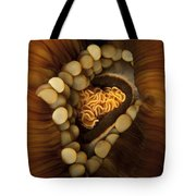 Yellow And Orange Anemone Mouth, Sabah Tote Bag