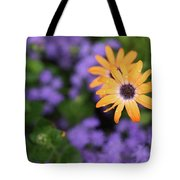 Yellow And Purple Tote Bag
