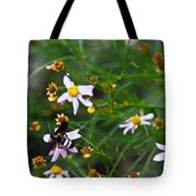 Yellow Banded Black Fly 1 Tote Bag