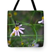 Yellow Banded Black Winged Fly 1 Tote Bag
