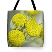 Yellow Cup Buds 1 Tote Bag