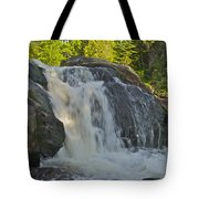 Yellow Dog Falls 4192 Tote Bag by Michael Peychich