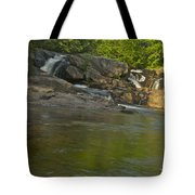 Yellow Dog Falls 4232 Tote Bag by Michael Peychich