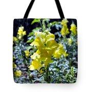 Yellow Dragons Tote Bag