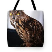 Yellow-eyed Owl Side Tote Bag
