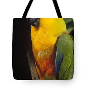 Yellow-faced Parrot Amazona Xanthops Tote Bag