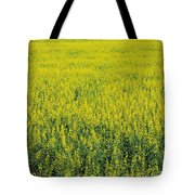 Yellow Field Of Canola Tote Bag