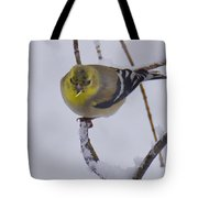 Yellow Finch Cold Snow Tote Bag