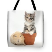 Yellow Guinea Pig And Kitten Tote Bag