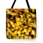 Yellow Kelp Pods Tote Bag