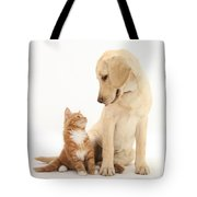Yellow Lab And Ginger Kitten Tote Bag