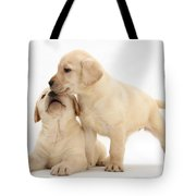 Yellow Lab Puppies Tote Bag