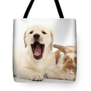 Yellow Lab Puppy With Rabbit Tote Bag by Mark Taylor