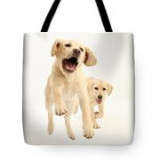 Yellow Labrador Pups Leaping And Running Tote Bag
