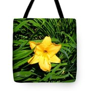 Yellow Lily  Tote Bag