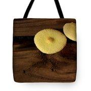 Yellow Mushrooms2 Tote Bag
