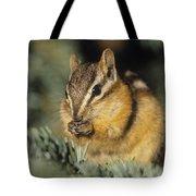 Yellow Pine Chipmunk, Kananaskis Tote Bag