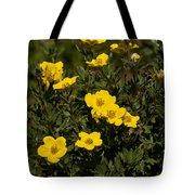 Yellow Potentilla Or Cinquefoils  Tote Bag