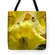 Yellow Rhododendron Trio Tote Bag