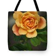 Yellow Rose Of Baden Tote Bag