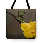 Yellow Rose Of Friendship Tote Bag