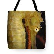 Yellow Seahorse, Batam, Riau, Indonesia Tote Bag