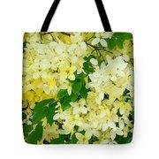 Yellow Shower Tree - 1 Tote Bag