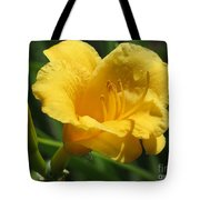Yellow Tiger Lily Tote Bag