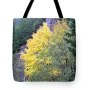 Yellow Trees Tote Bag