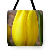 Yellow Tulip With Dew Tote Bag