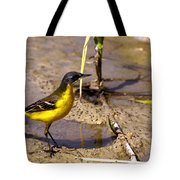 Yellow Wagtail Tote Bag