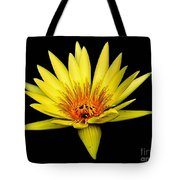Yellow Water Lily Tote Bag by Nick Zelinsky