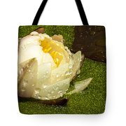 Yellow Waterlily Bud Tote Bag