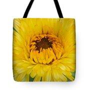 Yellow Zinnia 9494 4286 Tote Bag