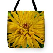 Yellow Zinnia_9480_4272 Tote Bag