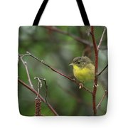 Yellowthroated Warbler Tote Bag