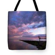 Yoga Dancer Asana On Beach Jetty Tote Bag